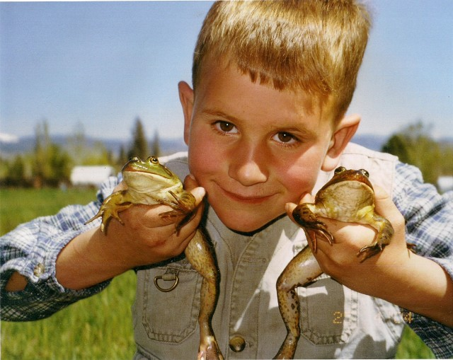 bullfrogs and a little boy