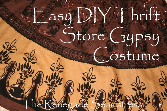 Thrift Store Gypsy Costume
