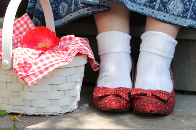 DIY Dorothy Costume from The Wizard of OZ