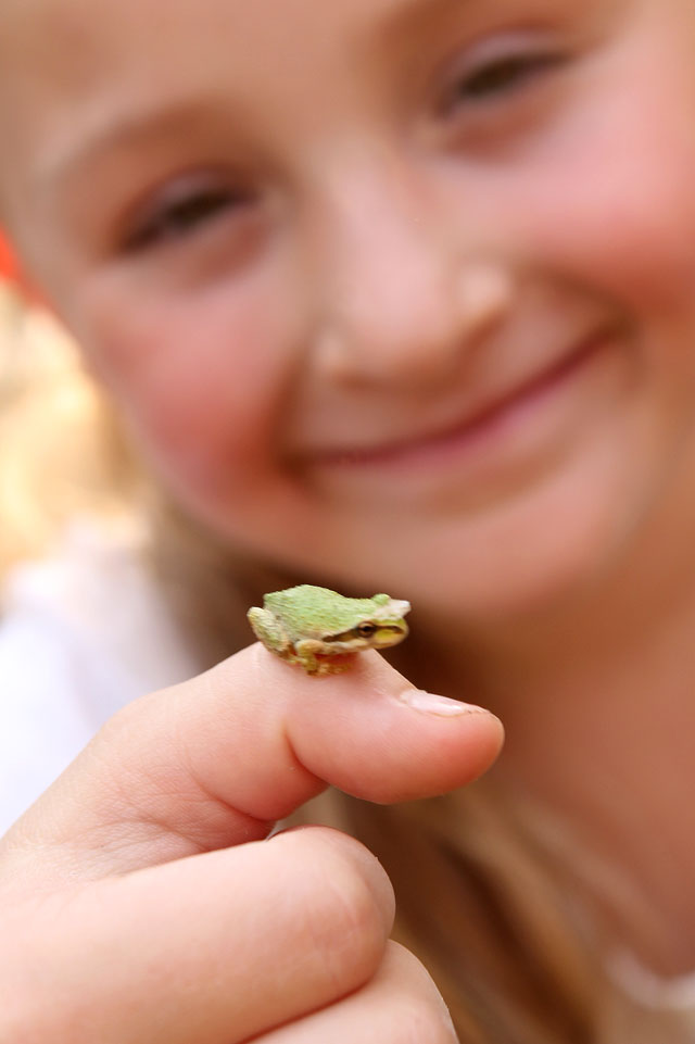 Brooke-and-the-frog