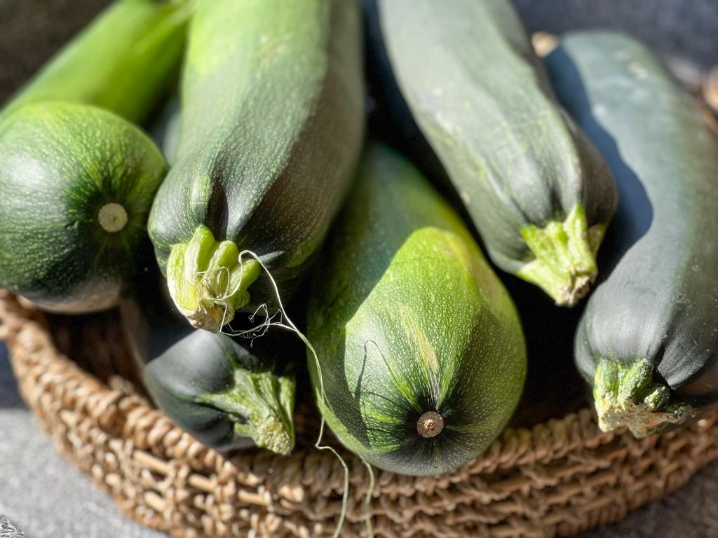 Basket of large zucchinis